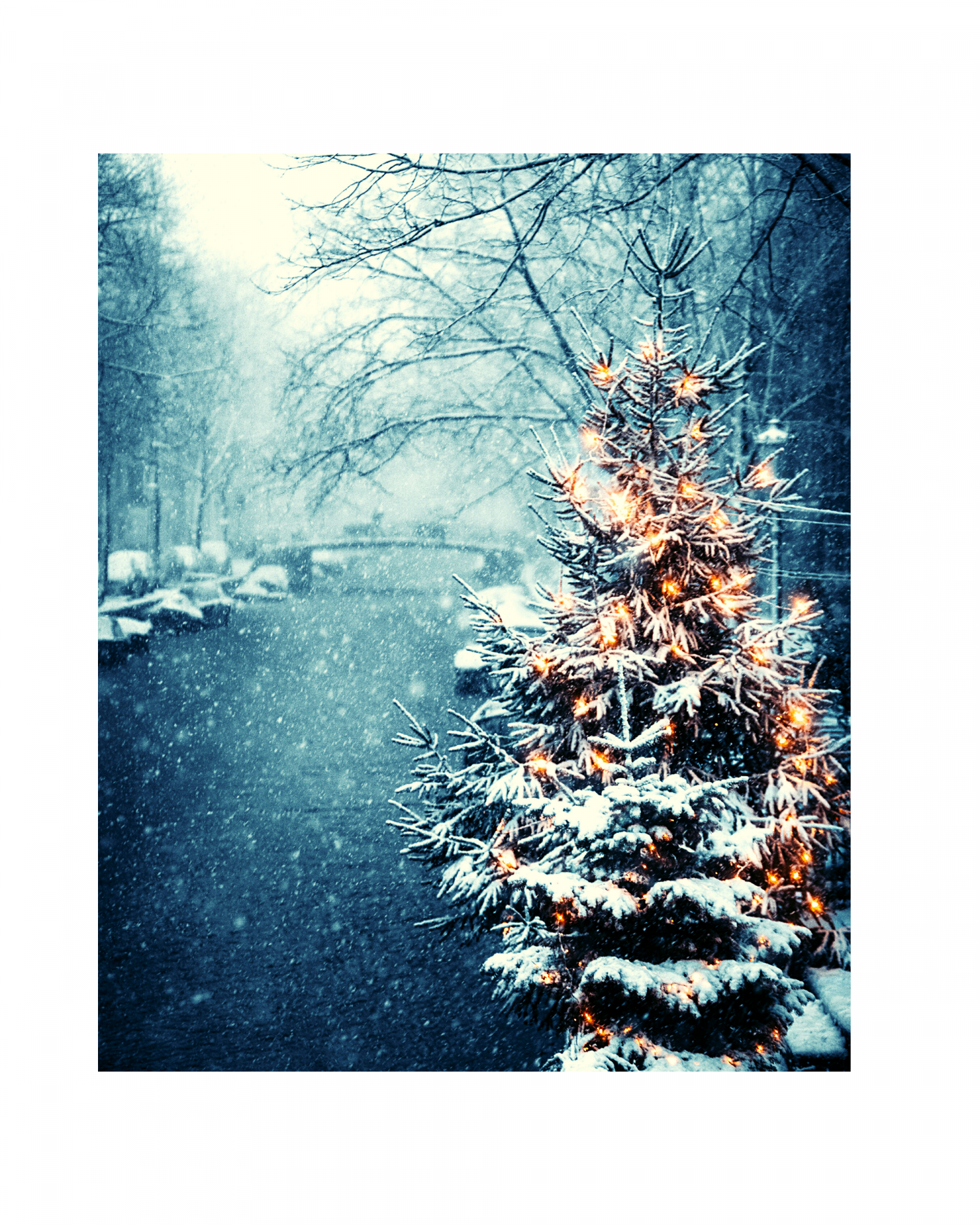 Xmas_snow_tree
